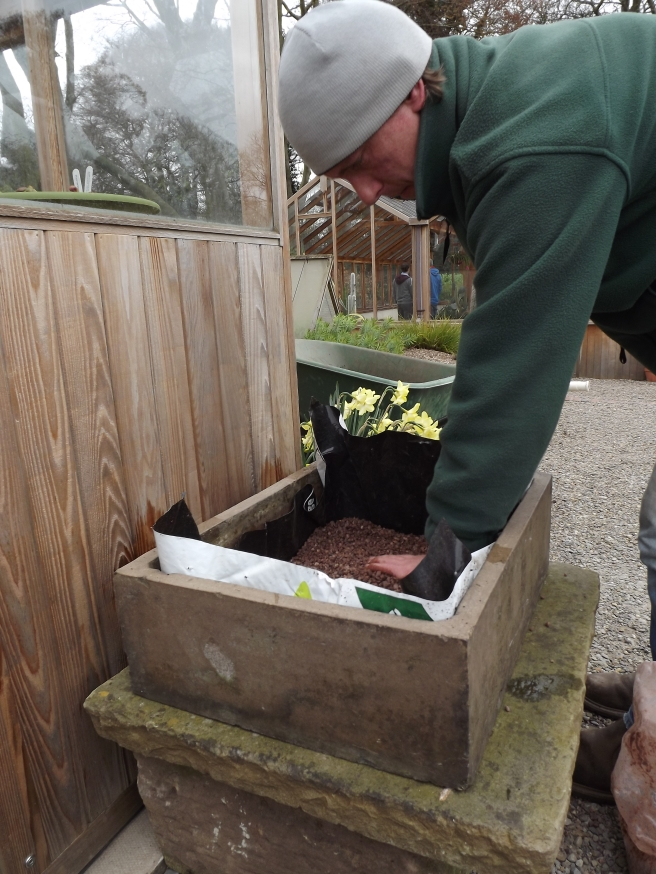 Preparing your container, Winterbourne House and Garden, Digging for Dirt