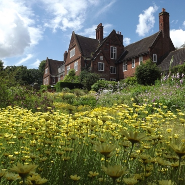 The National Collection of Anthemis, Winterbourne House and Garden, Digging for Dirt