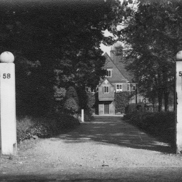 Winterbourne House and Drive, 1952, Winterbourne House and Garden, Digging for Dirt