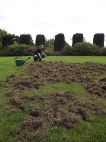 Lawns damaged by badgers, Winterbourne House and Garden, Digging for Dirt