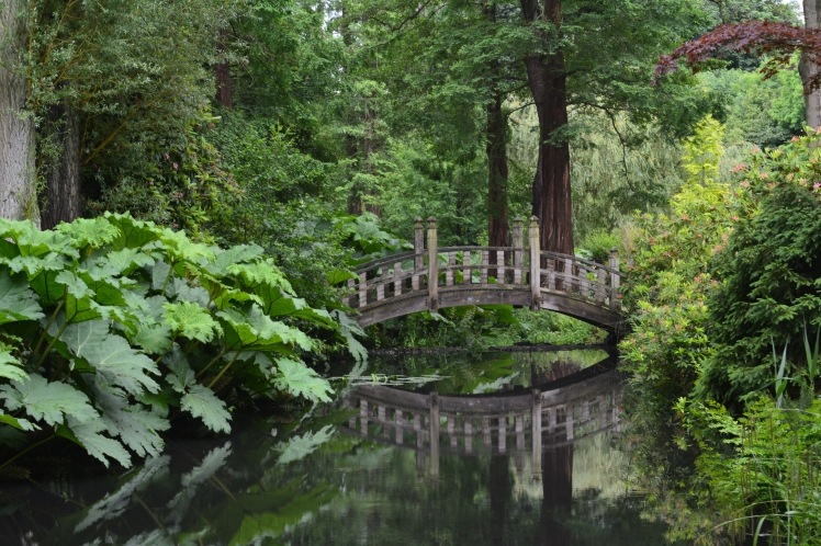 Japanese Bridge and Woodland Walk, photograph by Malcolm Mollart, Winterbourne House and Garden, Digging for Dirt