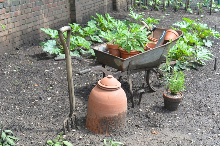 Kitchen Garden, photograph by Malcolm Mollart, Winterbourne House and Garden, Digging for Dirt
