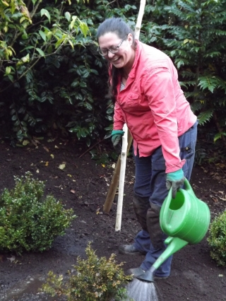 Watering newly planted box plants in the Winter Garden, Winterbourne House and Garden, Digging for Dirt